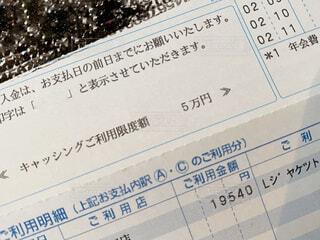 クレジットカードの明細書の写真・画像素材[4433361]