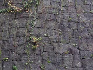 近くの岩の壁の写真・画像素材[709641]