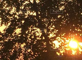 背景の夕日 - No.792583