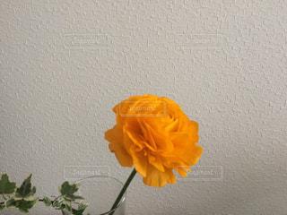 黄色い花の上に座って花の花瓶 - No.1022096
