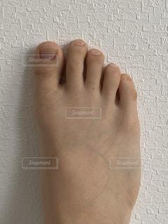 足の写真・画像素材[3375086]