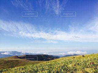 近くに緑豊かな緑の丘陵のアップの写真・画像素材[705067]