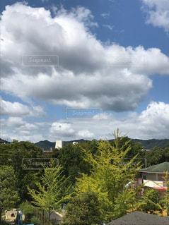 空には雲のグループの写真・画像素材[712945]