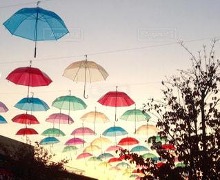 カラフルな傘 - No.743975