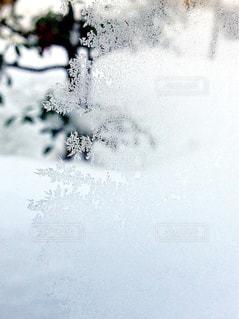 雪と霜 - No.963043