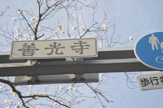 善光寺の文字に5羽のハトの写真・画像素材[1131215]