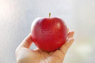 真っ赤なリンゴの写真・画像素材[1552939]