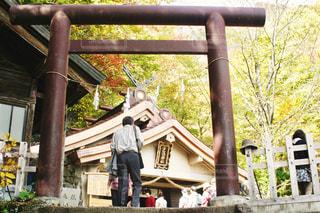 戸隠神社 奥社の写真・画像素材[1565971]