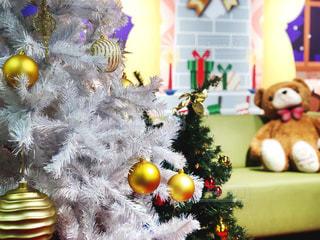 クリスマスツリーとぬいぐるみの写真・画像素材[1644908]