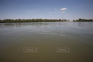 ドナウデルタ,ルーマニアの写真・画像素材[709019]