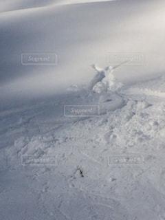 冬の写真・画像素材[704348]