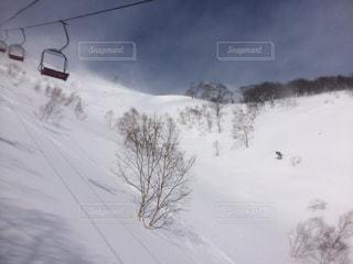 冬 - No.704564