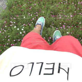 赤シャツの人の写真・画像素材[707797]