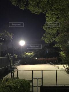 夜のテニスコートの写真・画像素材[1140881]