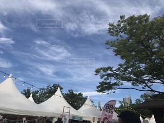 代々木公園の写真・画像素材[1308047]