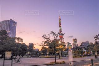 東京タワーの写真・画像素材[866869]
