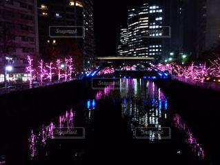 目黒川のライトアップ - No.886849