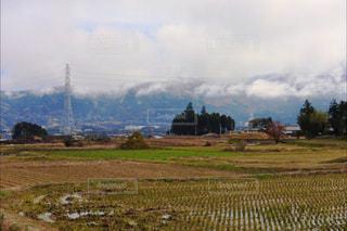 田んぼ - No.890135