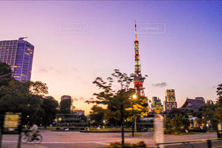 東京タワー - No.899299
