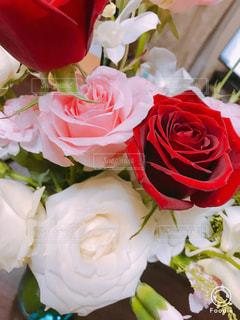 近くの花のアップの写真・画像素材[877998]