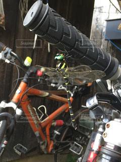 ロードバイクとオニヤンマの写真・画像素材[708030]