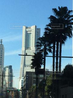 都市の高層ビルの写真・画像素材[706466]