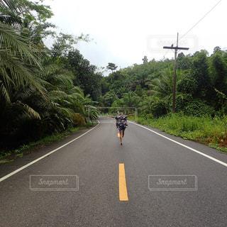 通り側の木と空の道の写真・画像素材[706986]