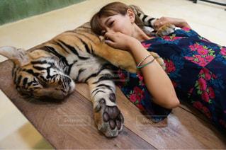 犬のベッドに横になっている少女の写真・画像素材[707034]