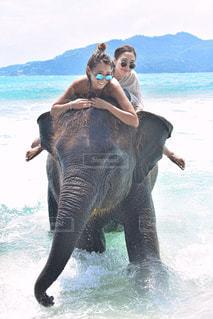 水の体に象に乗って男の写真・画像素材[707046]