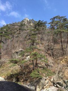 岩が多い区域でキリンの立っています。の写真・画像素材[1083138]