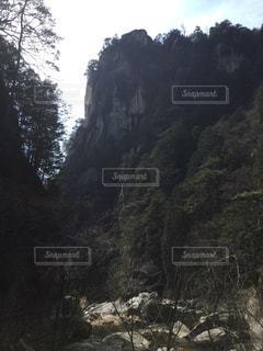 近くに森の横にある丘の中腹のアップの写真・画像素材[1083150]