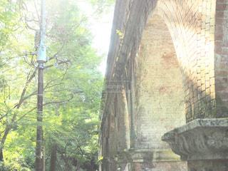 石の壁の横にあるツリーの写真・画像素材[709500]