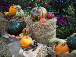 新鮮な果物や野菜の展示の山の写真・画像素材[717819]