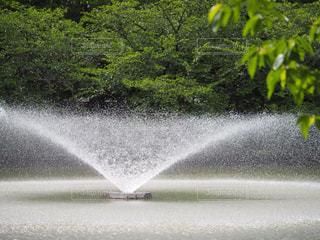 水の泉の写真・画像素材[730498]