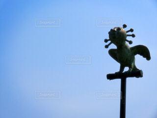 空を飛んでいる鳥の写真・画像素材[742217]