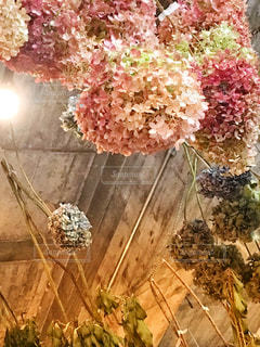 近くの花のアップの写真・画像素材[792032]