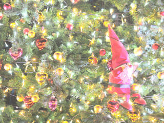 色とりどりの花のグループの写真・画像素材[933870]