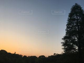 空に虹の写真・画像素材[1155407]