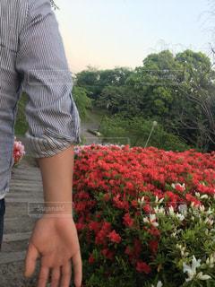 花の前に立っている少年の写真・画像素材[1155415]