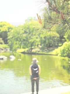 木の隣に水します。の写真・画像素材[1155420]