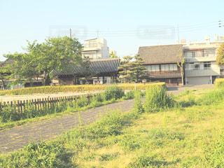 下り列車を走行する列車を追跡フィールドの近くの写真・画像素材[1155528]