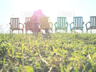 草の中に立っている人々 のカップルの写真・画像素材[1382640]