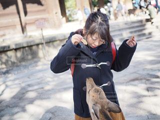 犬を持っている人の写真・画像素材[1701814]