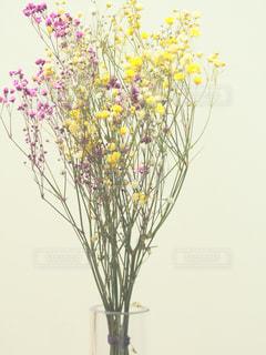 植物の花の花瓶の写真・画像素材[2100721]