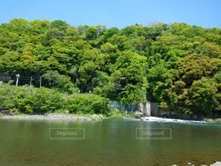 木々 に囲まれた水の体の写真・画像素材[720420]