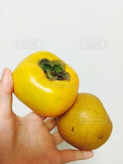 リンゴを持っている手の写真・画像素材[763514]