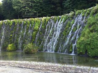 ツリーの横にある大きな滝の写真・画像素材[764125]