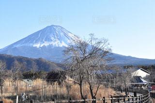 背景の山と木の写真・画像素材[964587]