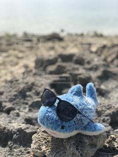 近くに岩のビーチ沿いの詰められたおもちゃのアップの写真・画像素材[1016820]