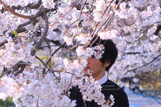 花を持っている人の写真・画像素材[1107121]
